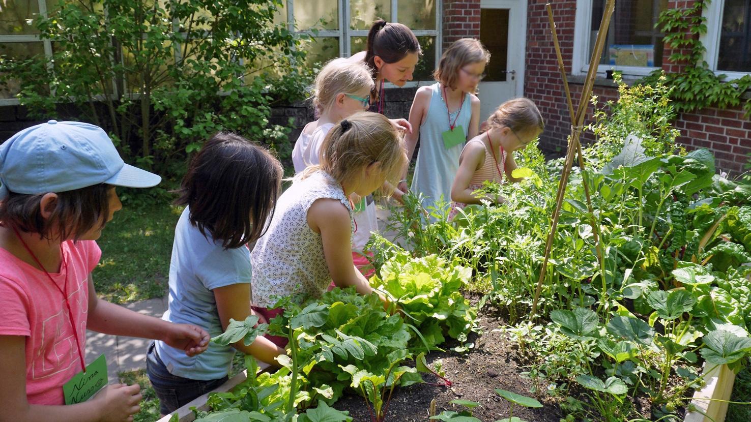 Gemeinsames Gärtnern für Kinder