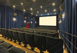 Woche der Kinos 2016