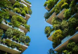 300.000 Euro für Kieler Stadtgestaltung