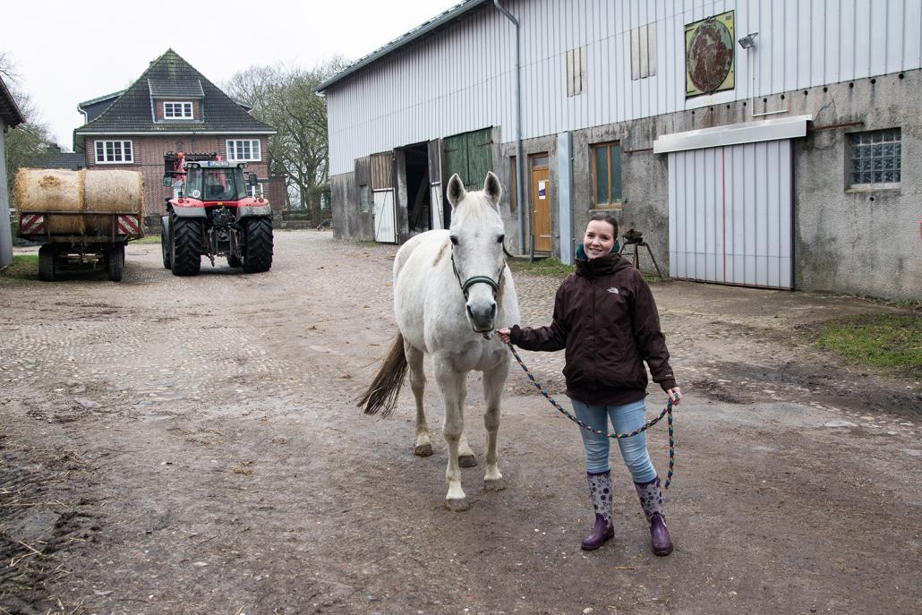 Als ich die Pferde nach draußen bringe, kommen Kindheitserinnerungen hoch