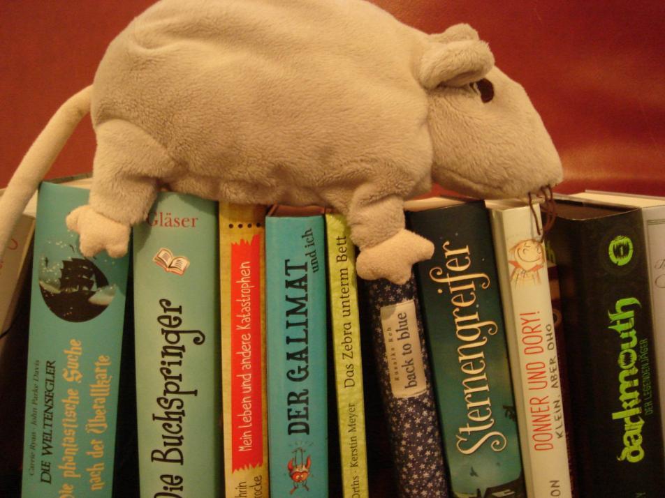 """Die """"Leseratten"""" aus dem Literaturhaus präsentieren am 10. März ihre """"Lesetipps"""" in der Buchhandlung Hugendubel"""