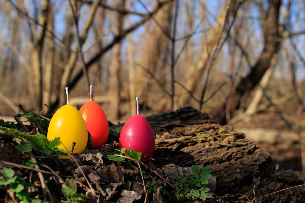 Auch dieses Jahr hat der Osterhase wieder bunte Ostereier im Hochseilgarten versteckt