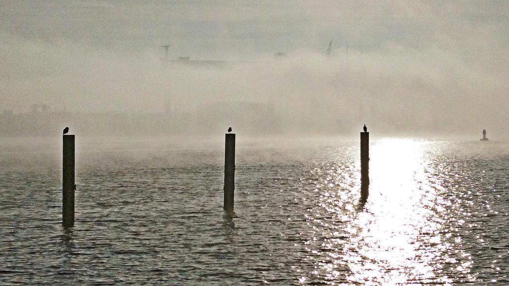 Kiel kann auch im Nebel sehr idyllisch sein