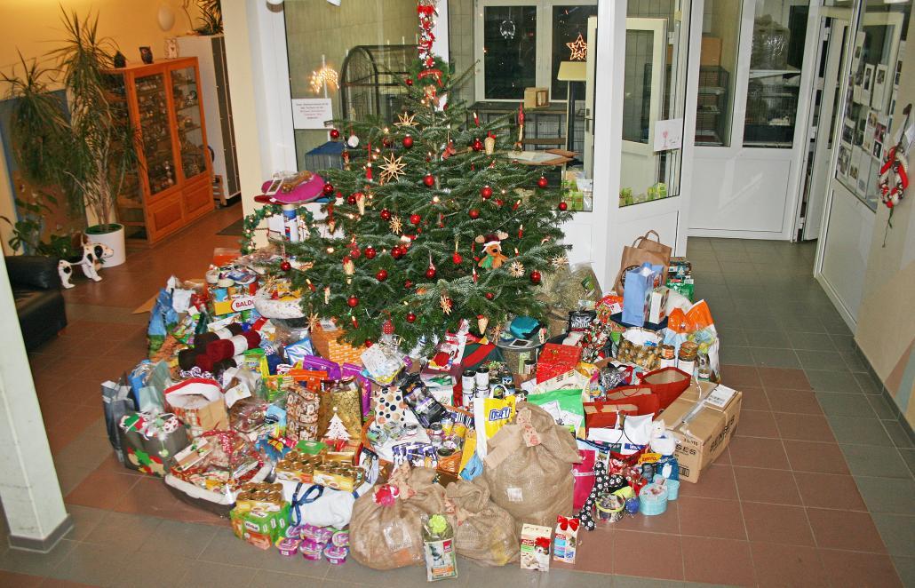 Der Weihnachtsbaum wirdliebevoll geschmückt