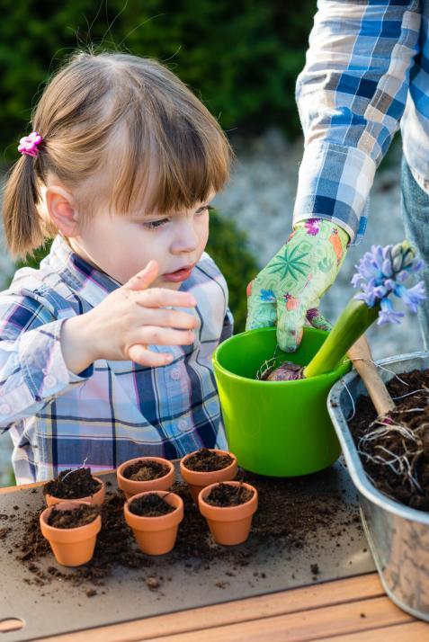 Beim CAP Kiel können kleine Gärtner Blumen pflanzen