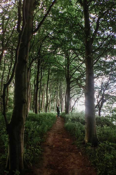 Tobias' Kiel-Moment im Wald in Schwedeneck