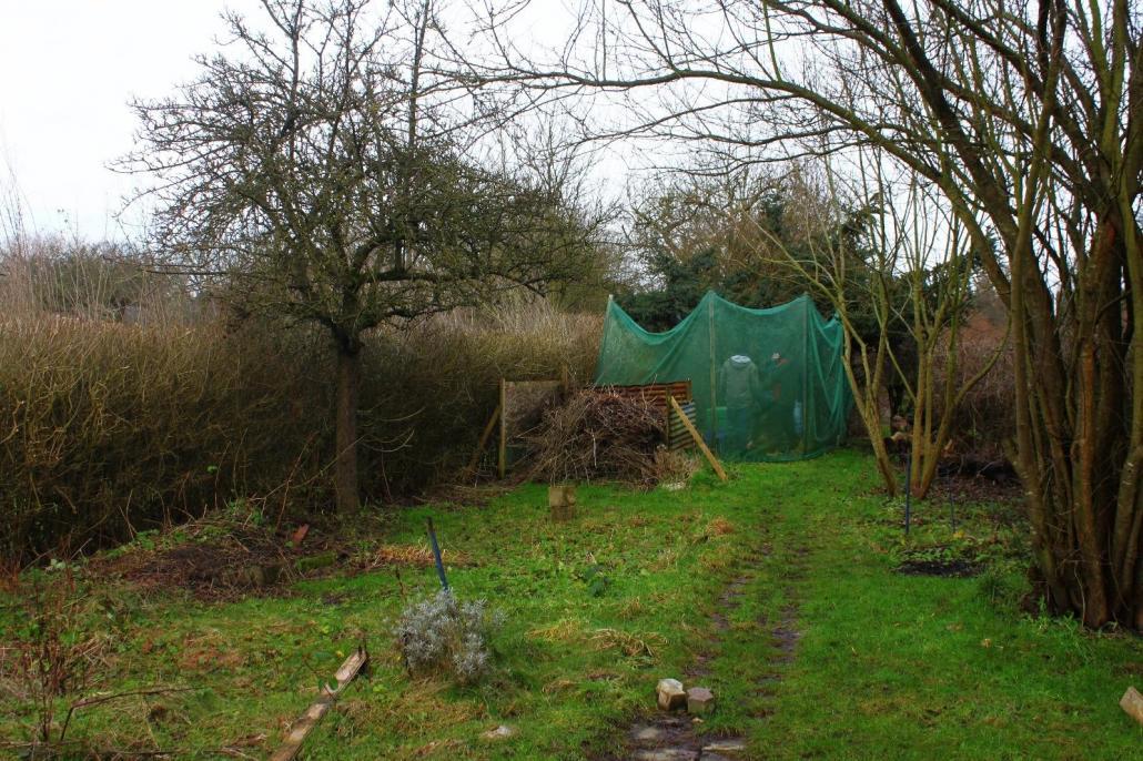 Seit Anfang des Jahres hat sich viel getan im Garten. Das Ergebnis kann sich sehen lassen:
