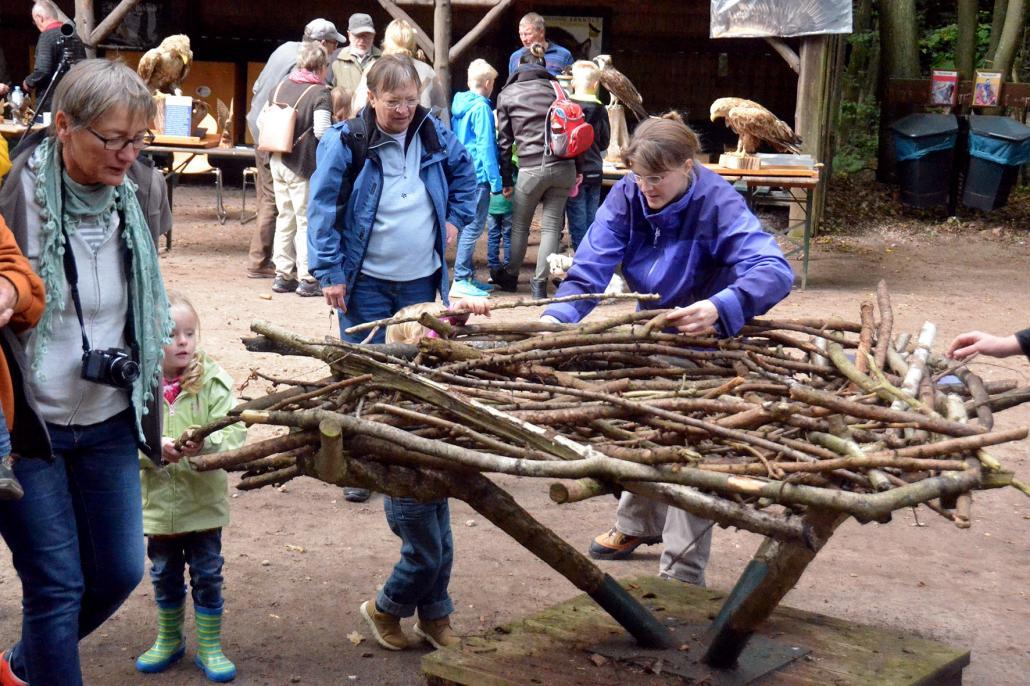 Besucher bauen einen Adlerhorst
