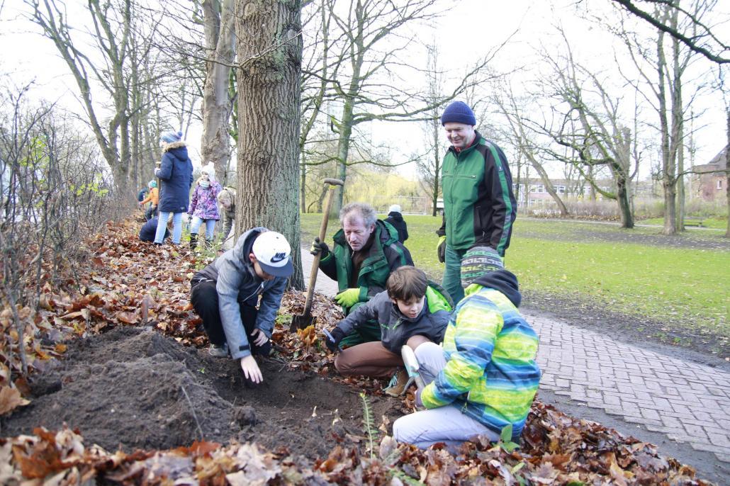 Schützenpark: gemeinsam mit den Schülern der 5c setzen die Schützenparkhelfer Brigitta Dutz und Wolfgang Enge Narzissen