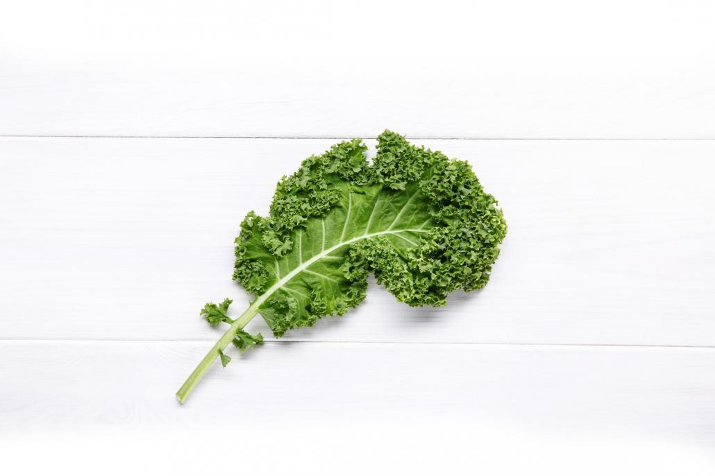 Extrem vielseitig: roh als Salat, getrocknet als Chips, im Pesto, auf der Quiche oder einfach als warmes Gemüse