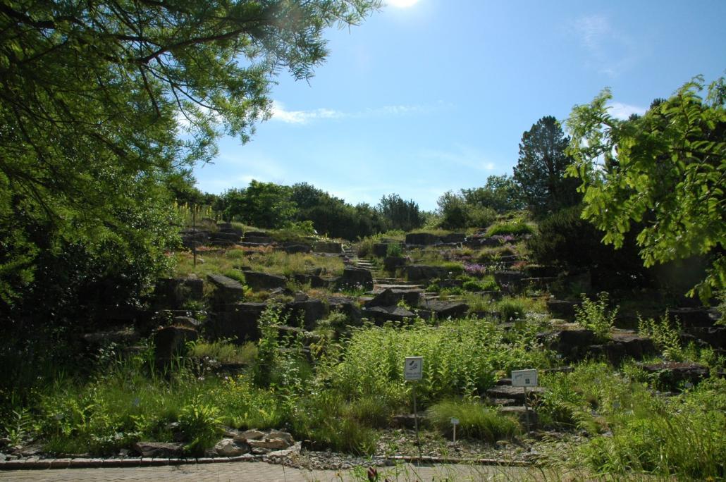 Ab Juli auch werktags wieder zugänglich: das Alpinum im Botanischen Garten der CAU.