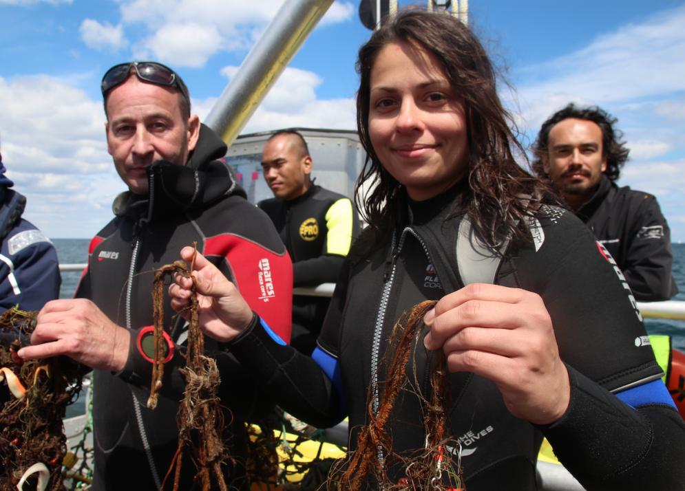 Die Taucher der Scientific Diving Association suchen in der Ostsee nach Geisternetzen und Plastikmüll
