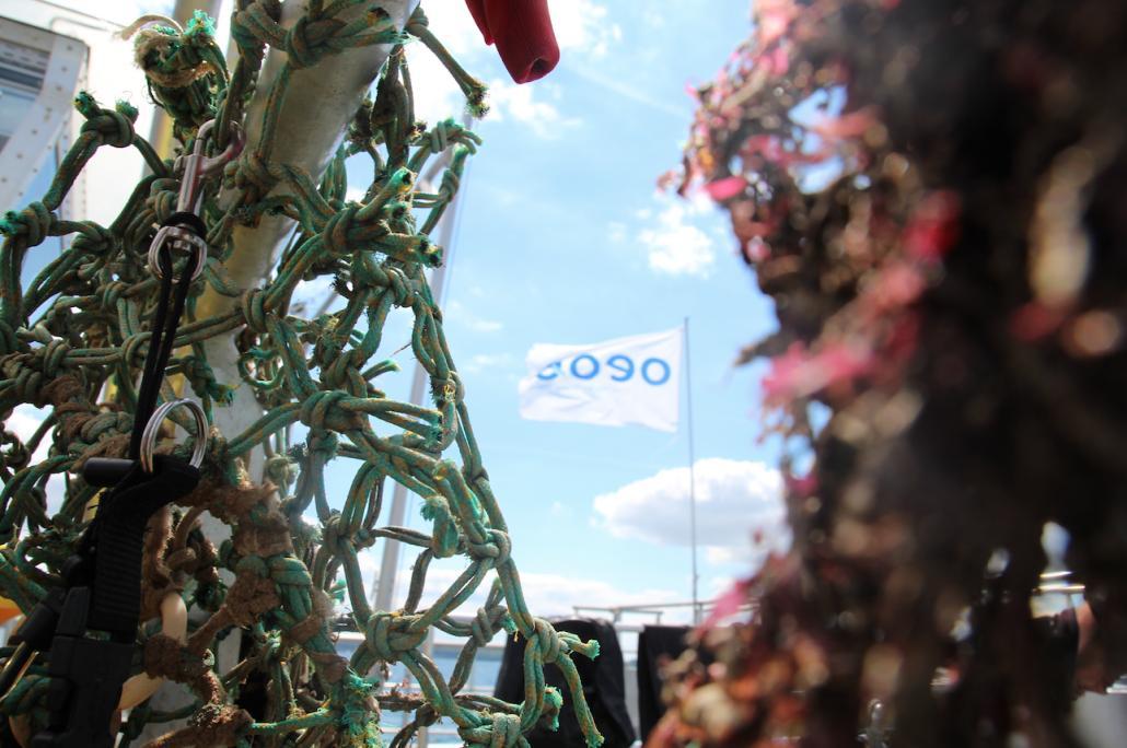 Beim letzten Tauchgang bargen die Umweltschützer von OEOO ein zwölf Meter langes Geisternetz