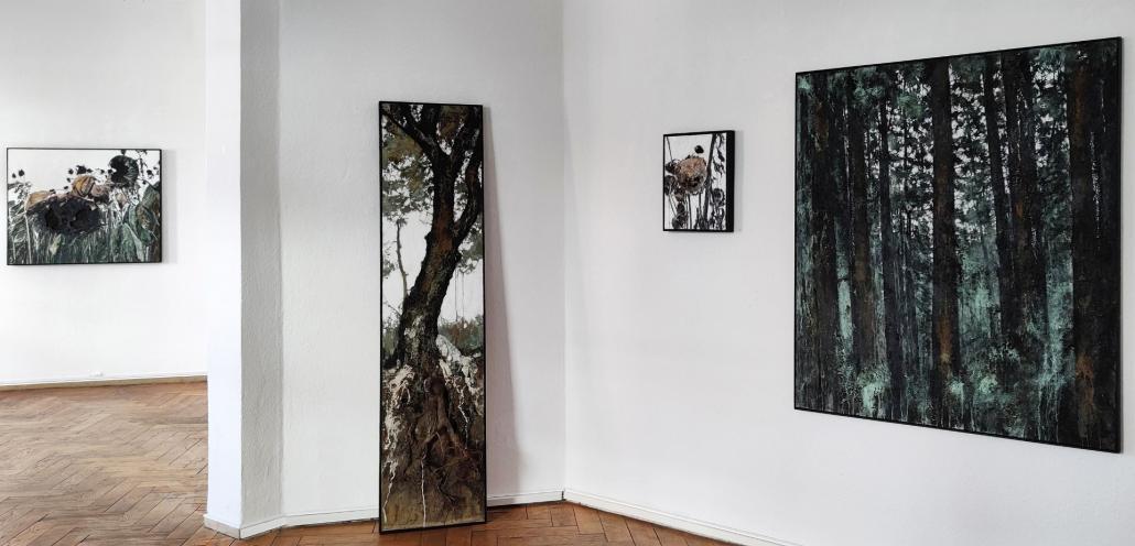 """Die """"Experimentierfelder"""" von Jens Rausch"""