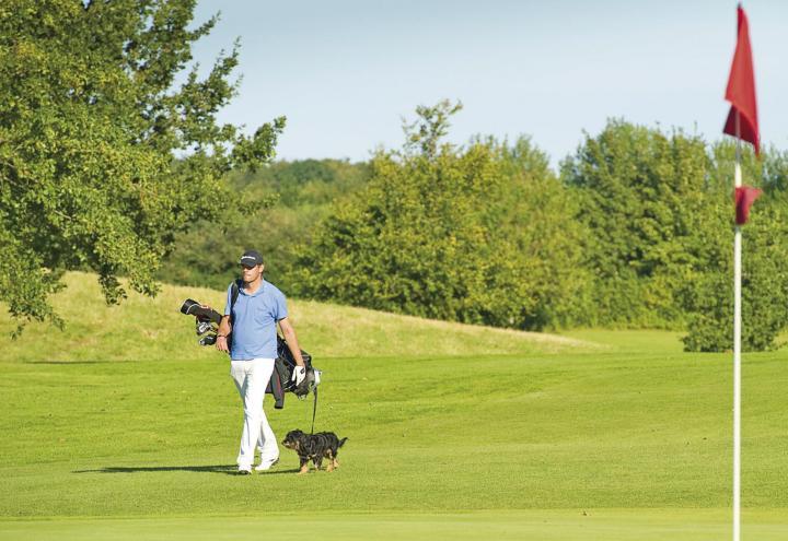 Golf-Club für Hund und Herrchen