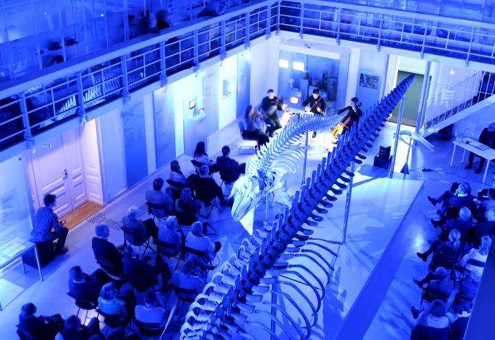 Nachtkonzert: Auf musikalischer Reise im Zoologischen Museum
