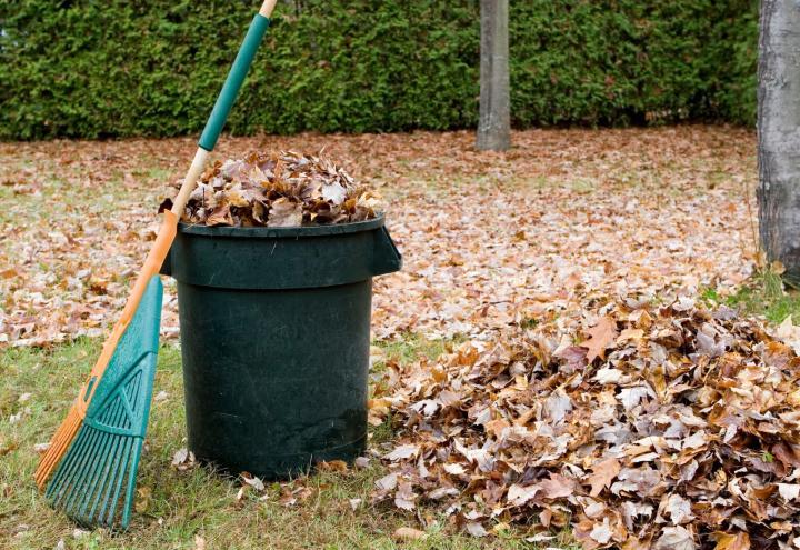 Gartenabfall kostenlos abgeben